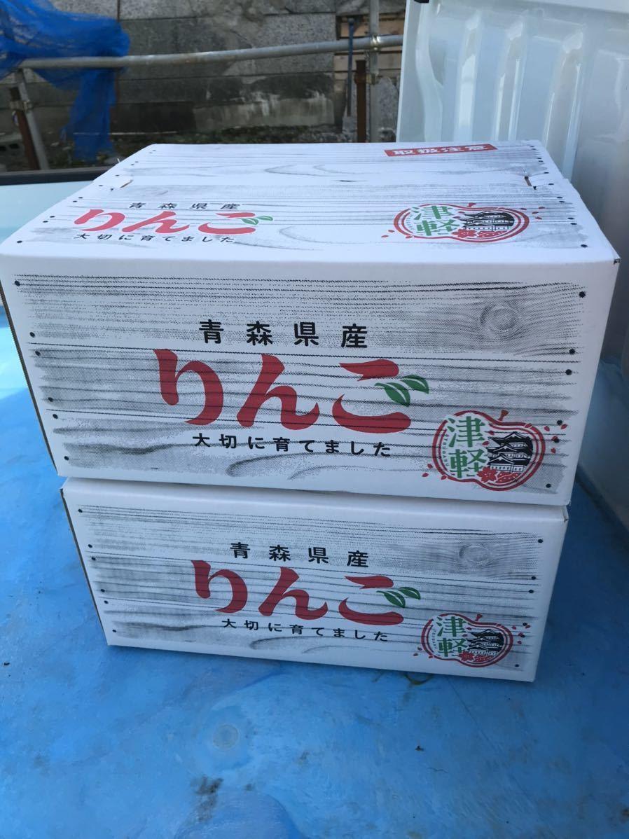 青森県産 りんご サンふじ 葉とらず 19kg前後 (家庭加工用) 2_画像3