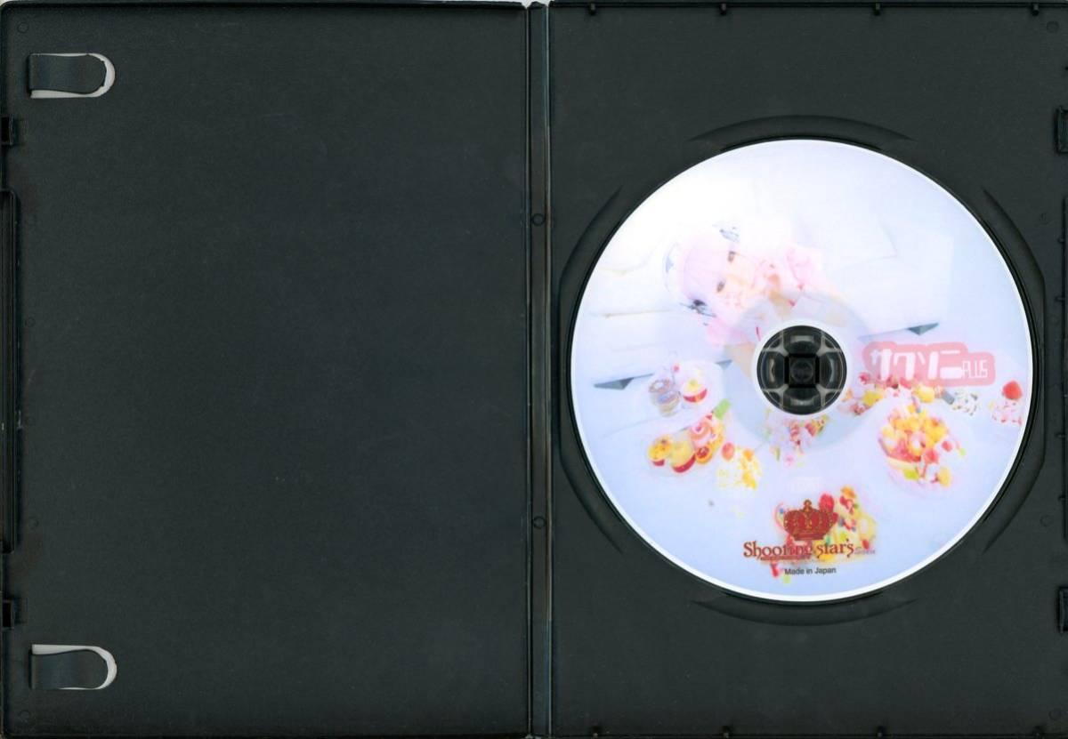 Shooting Star's(saku/サク/『サクソニPLUS』/コスプレROM写真集(すーぱーそに子コスプレ写真集第二段)/画像総数400枚/2012年発行_画像2
