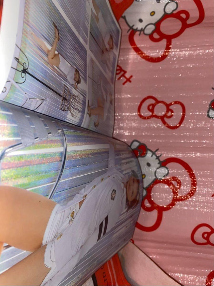 ☆ヤングアニマル 2008年No9 超人気声優が本誌 初登場 巻頭グラビア 平野綾 明るくセクシー 浜田翔子 ふたりエッチ 新連載 アルフー少年_画像4