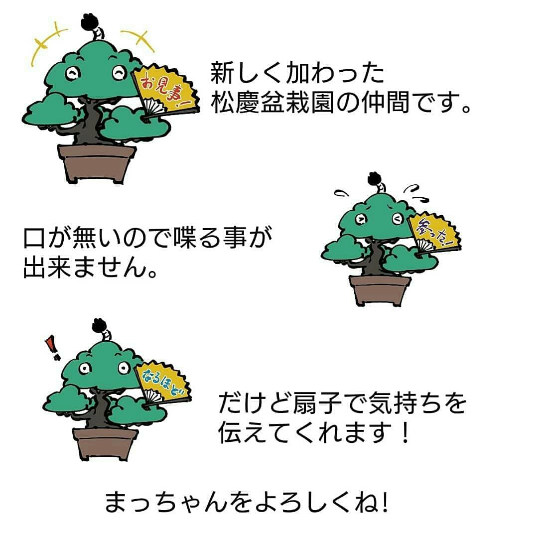 ミニ盆栽 黒松 小品盆栽「まっちゃん」缶バッジ 44mm 松慶盆栽園オリジナルキャラクターです。_画像7