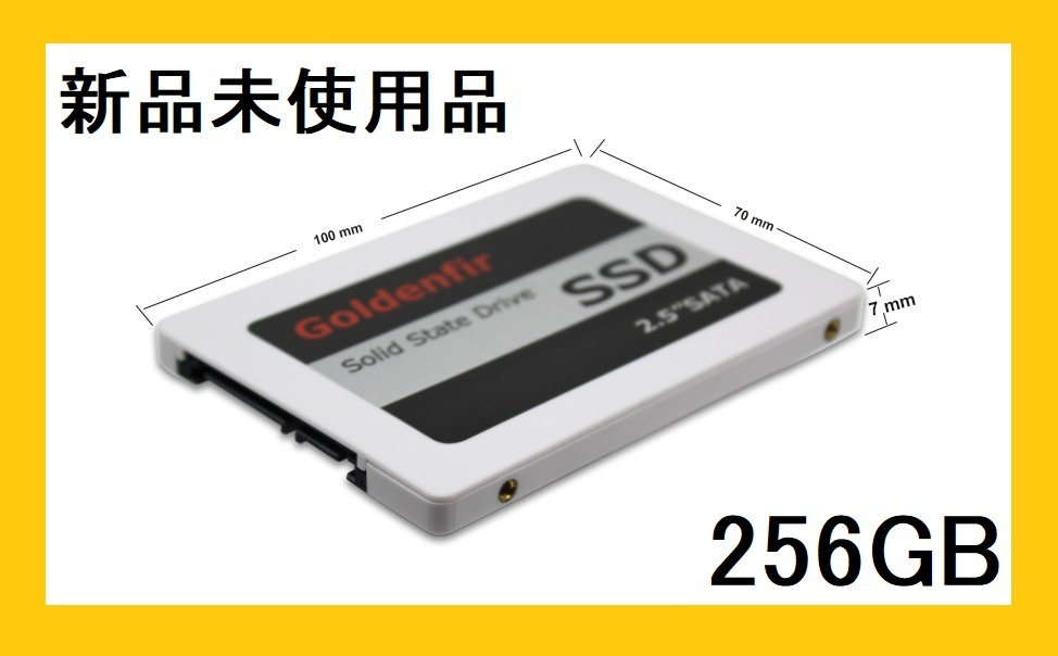 goldenfir SSD 256GB