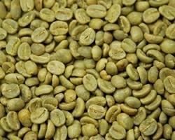 【10㎏】コーヒー生豆 エチオピア シダモG-4 生豆 スタンダードコーヒー モカ ブレンドコーヒー 自家焙煎 カフェ 送料無料_画像2