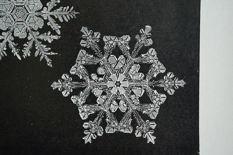 【アンティーク博物図版 雪の結晶 紙もの】ビンテージ ブロカント 紙物 研究 実験 レトロ 古道具 資料 蚤の市 ディスプレイ インテリアに_画像8