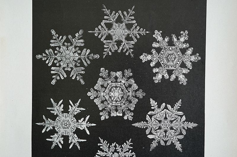 【アンティーク博物図版 雪の結晶 紙もの】ビンテージ ブロカント 紙物 研究 実験 レトロ 古道具 資料 蚤の市 ディスプレイ インテリアに_画像2