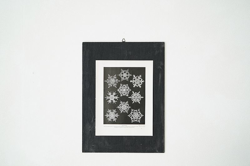 【アンティーク博物図版 雪の結晶 紙もの】ビンテージ ブロカント 紙物 研究 実験 レトロ 古道具 資料 蚤の市 ディスプレイ インテリアに_画像4