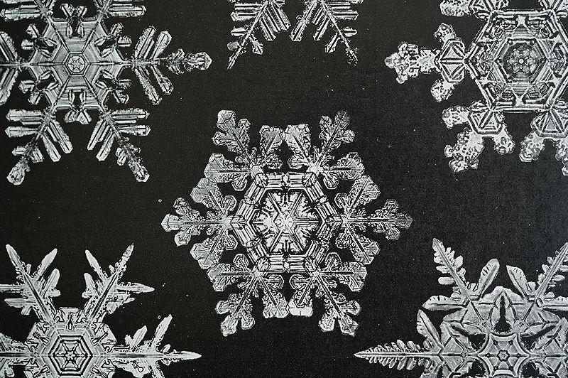 【アンティーク博物図版 雪の結晶 紙もの】ビンテージ ブロカント 紙物 研究 実験 レトロ 古道具 資料 蚤の市 ディスプレイ インテリアに_画像5