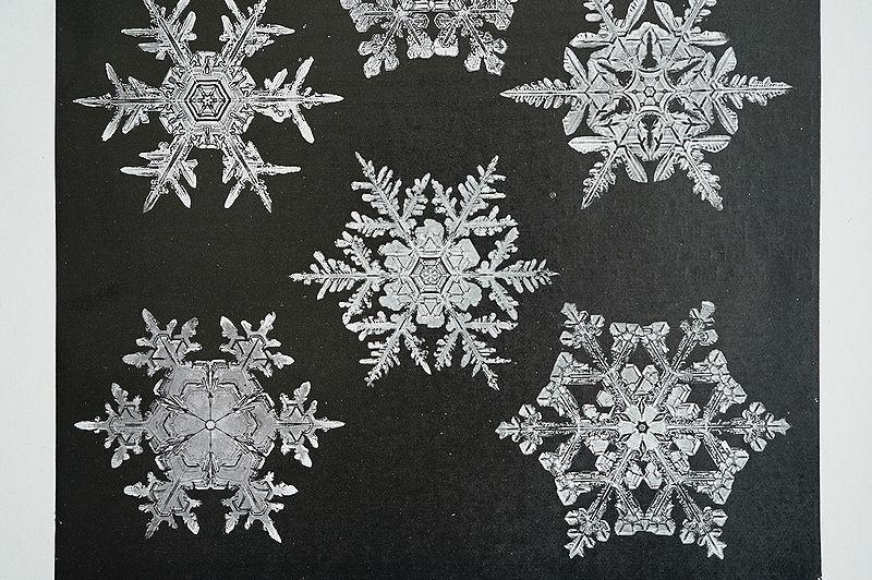 【アンティーク博物図版 雪の結晶 紙もの】ビンテージ ブロカント 紙物 研究 実験 レトロ 古道具 資料 蚤の市 ディスプレイ インテリアに_画像3