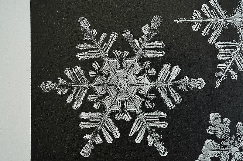 【アンティーク博物図版 雪の結晶 紙もの】ビンテージ ブロカント 紙物 研究 実験 レトロ 古道具 資料 蚤の市 ディスプレイ インテリアに_画像6