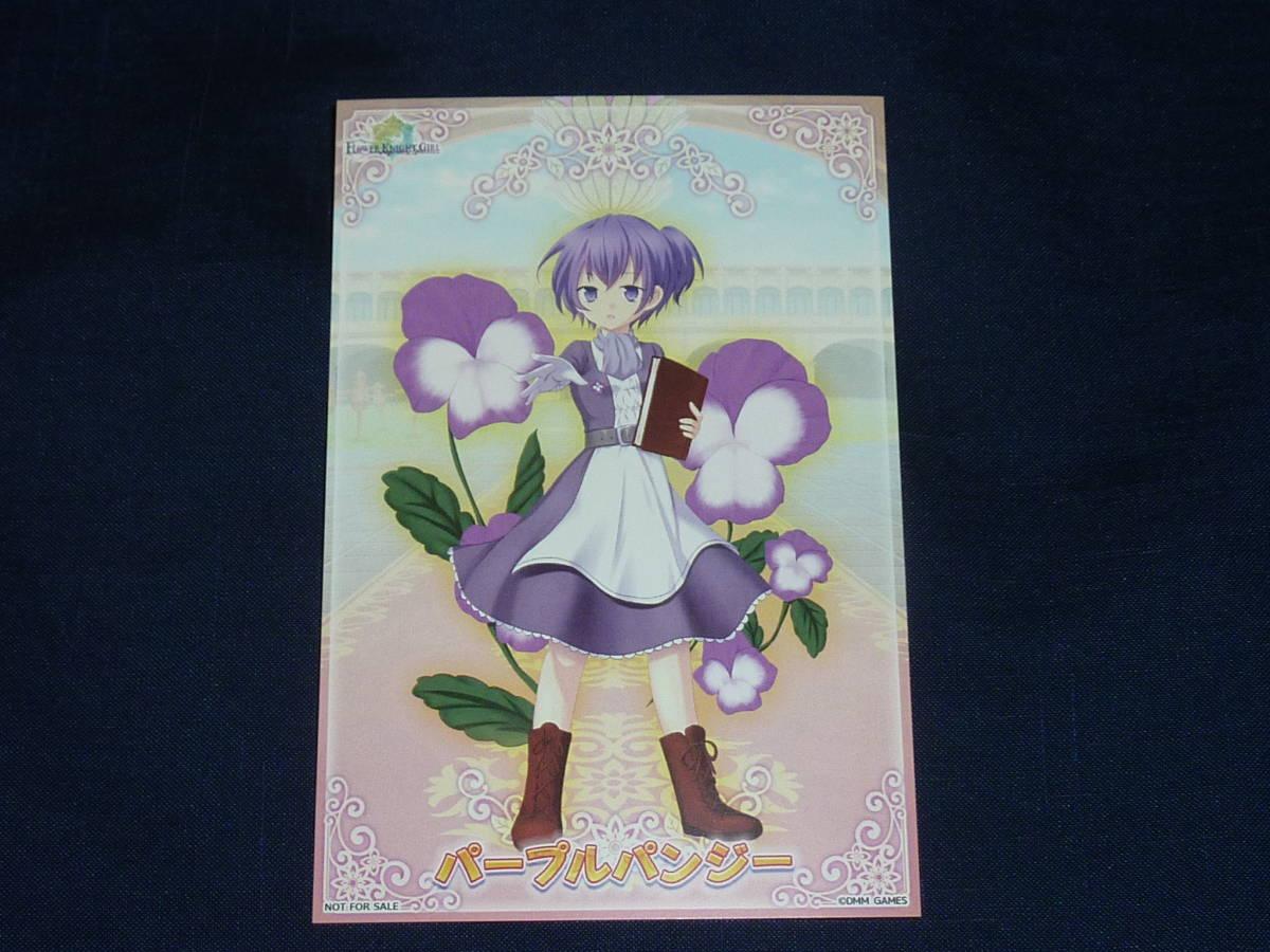 C97 コミケ97 フラワーナイトガール パープルパンジー 会場購入限定特典ブロマイドカード 花騎士 FLOWER KNIGHT GIRL _画像1