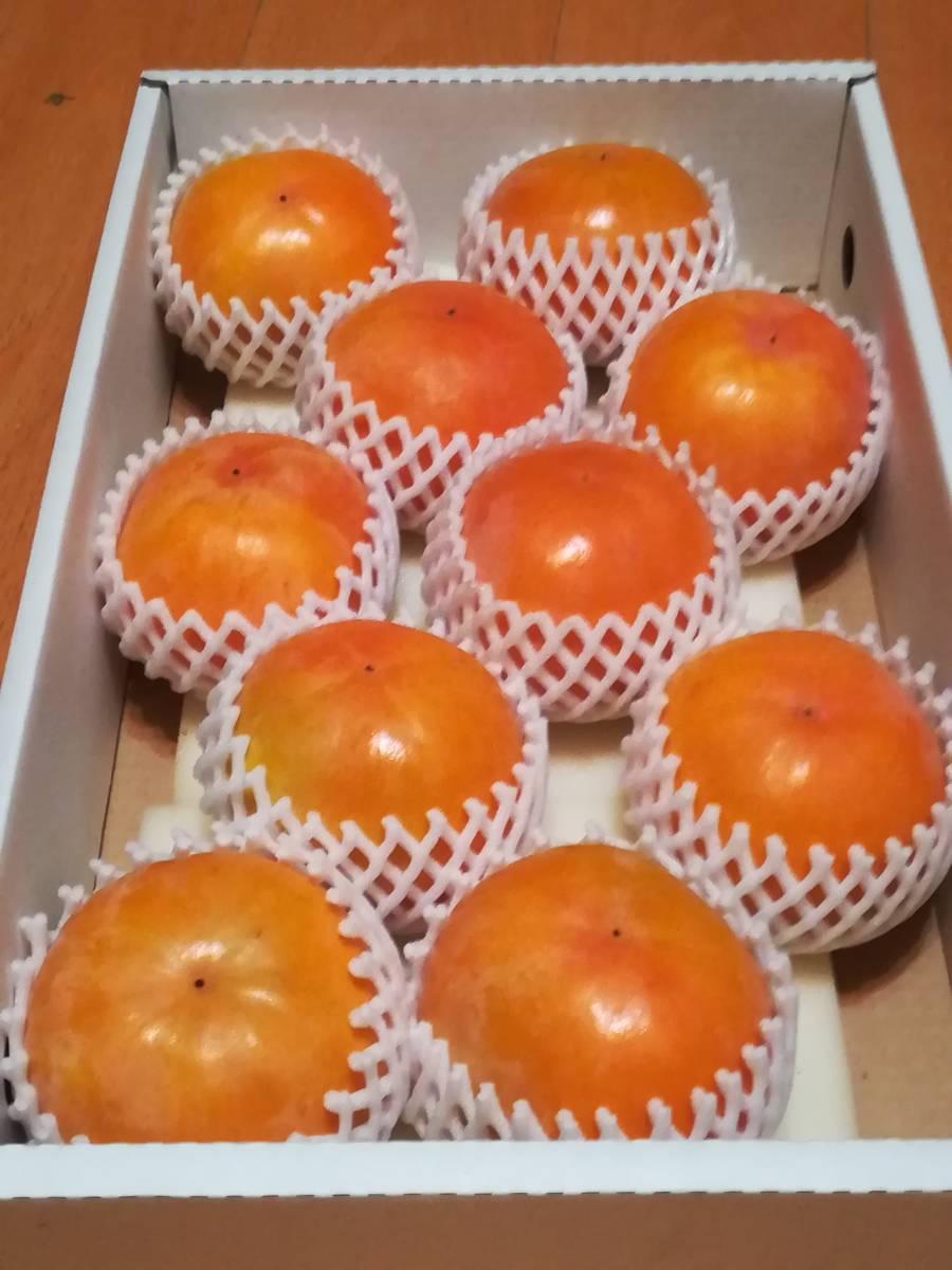 和歌山県紀美野町産 富有柿 農家直送 上物 サイズ3L4Lが10個入り(約3.5㎏)入り