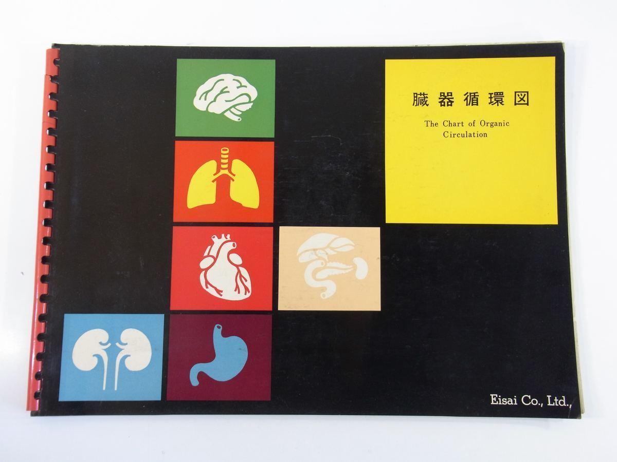 臓器循環図 監修・中井準之助 エーザイ株式会社 昭和 大型本 26cm×36cm 人体解剖図 医学 医療 治療 病院 医者 全7枚_画像1