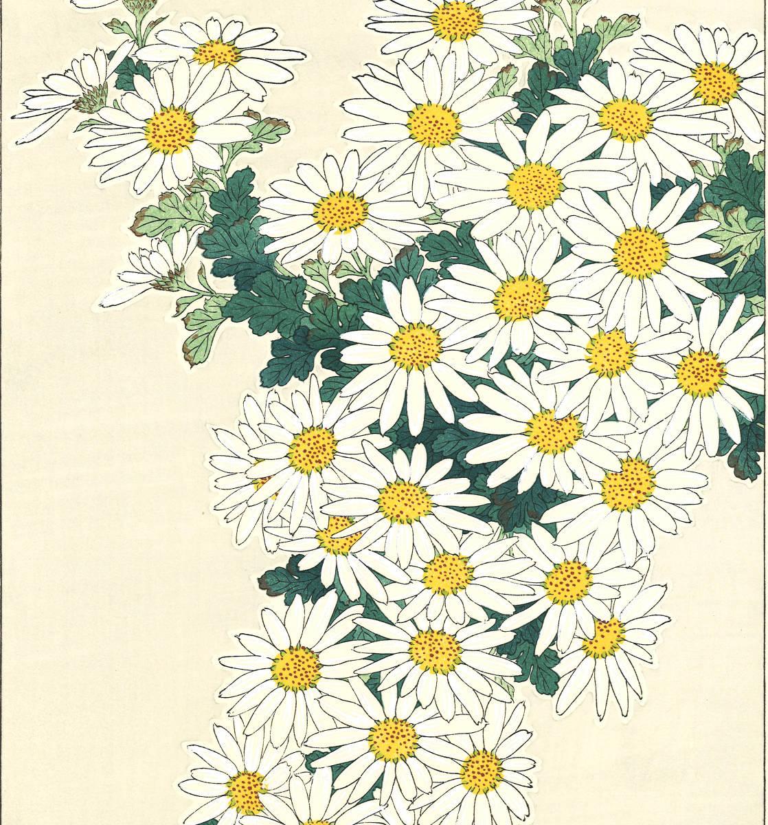 河原崎奨堂 (Kawarazaki Shodo) (1899~1973)木版画 F037 菊 花版画(Chrysanthemum)初版昭和初期~京都の一流の摺師の技をご堪能下さい。_画像7