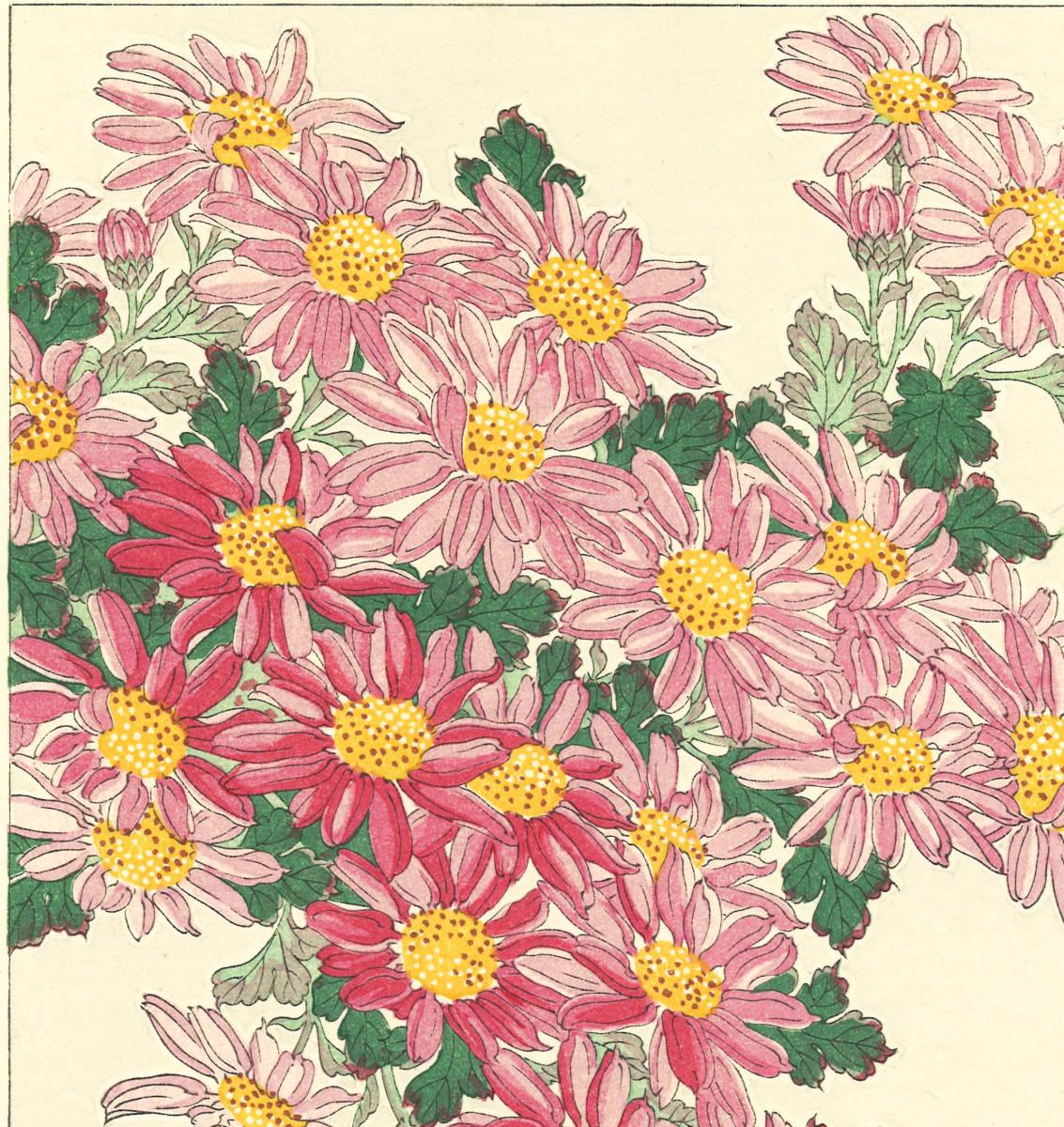河原崎奨堂 (Kawarazaki Shodo) (1899~1973)木版画 F036 菊 花版画(Chrysanthemum)初版昭和初期~京都の一流の摺師の技をご堪能下さい_画像9