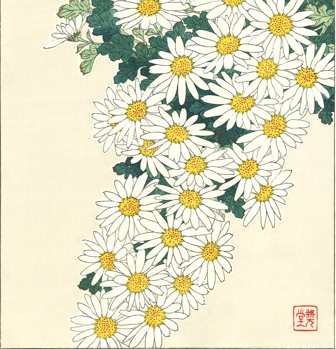 河原崎奨堂 (Kawarazaki Shodo) (1899~1973)木版画 F037 菊 花版画(Chrysanthemum)初版昭和初期~京都の一流の摺師の技をご堪能下さい。_画像8