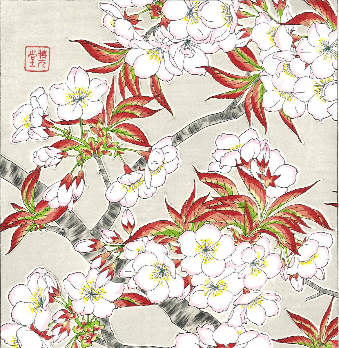 河原崎奨堂 (Kawarazaki Shodo) (1899~1973) 木版画 F020 桜 花版画 (cherry) 初版昭和初期~ 京都の一流の摺師の技をご堪能下さい。_画像6