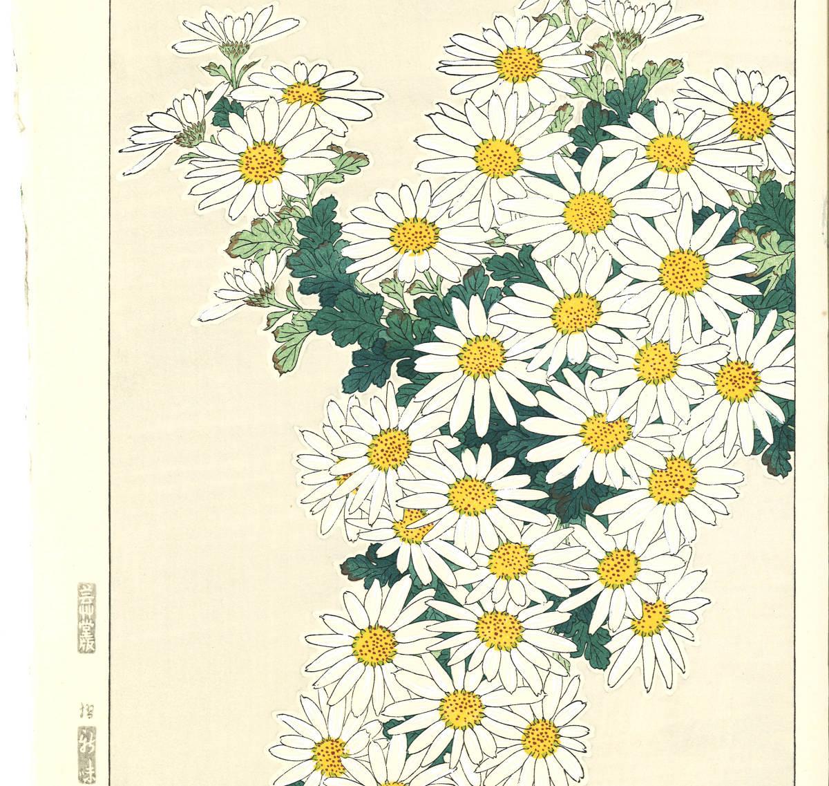 河原崎奨堂 (Kawarazaki Shodo) (1899~1973)木版画 F037 菊 花版画(Chrysanthemum)初版昭和初期~京都の一流の摺師の技をご堪能下さい。_画像4