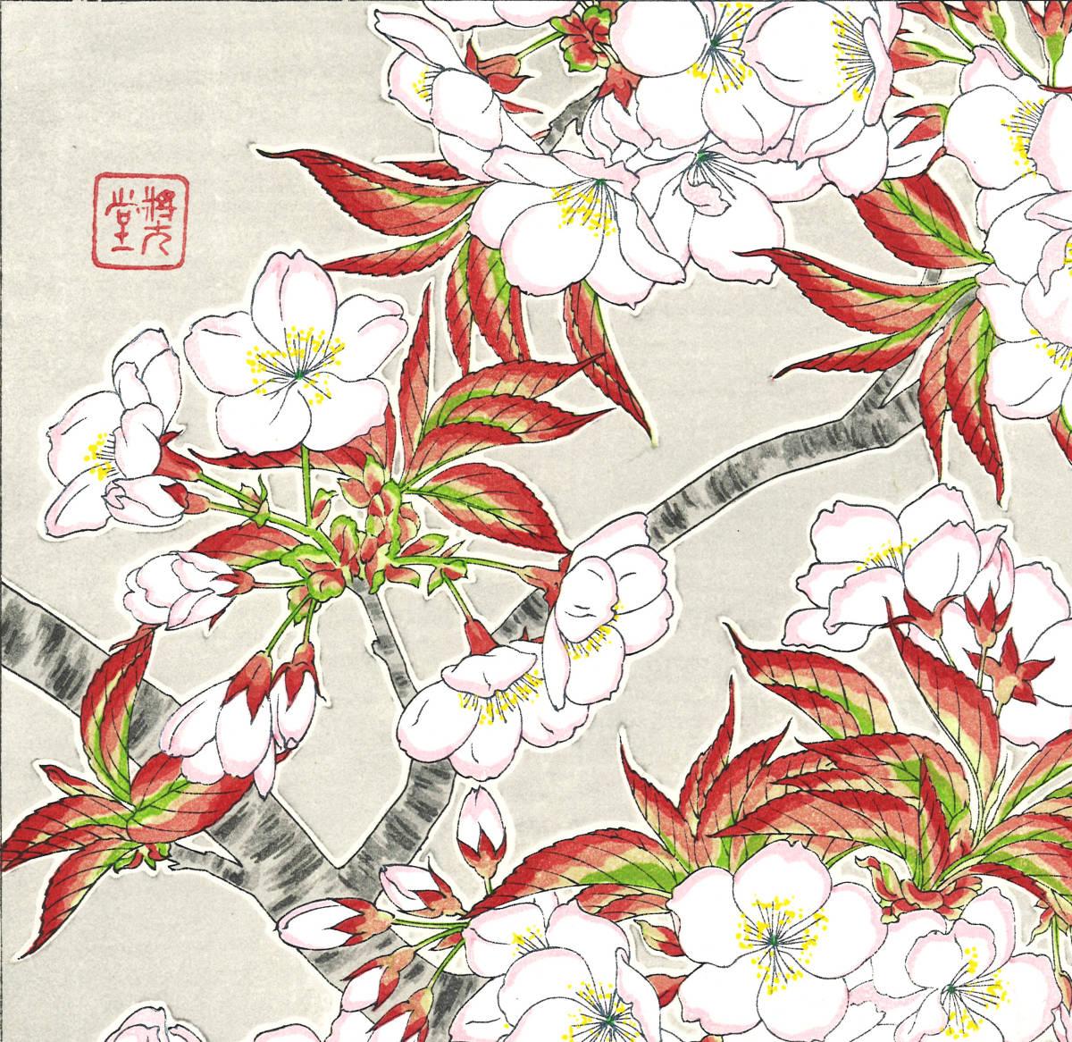 河原崎奨堂 (Kawarazaki Shodo) (1899~1973) 木版画 F020 桜 花版画 (cherry) 初版昭和初期~ 京都の一流の摺師の技をご堪能下さい。_画像9