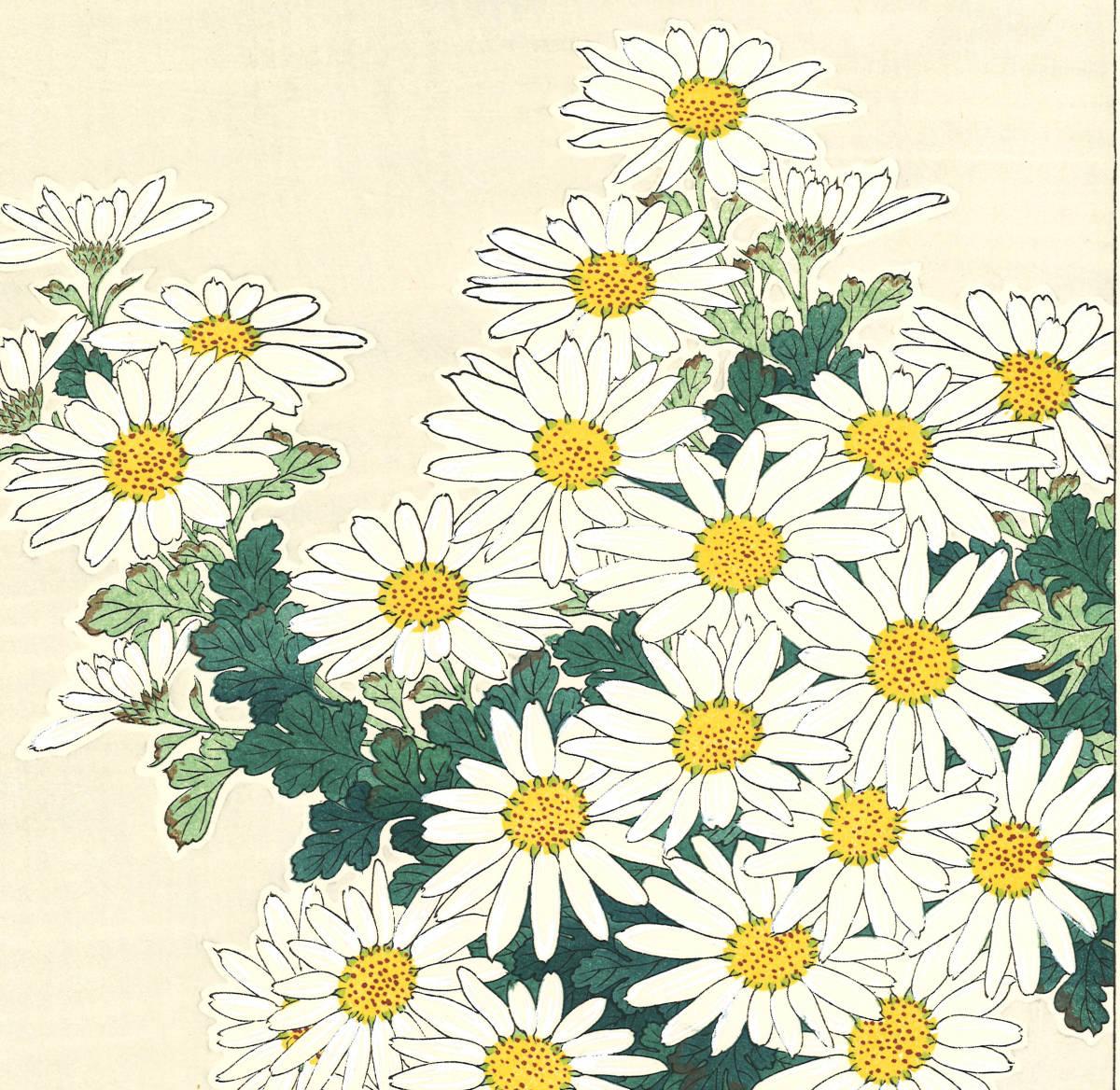 河原崎奨堂 (Kawarazaki Shodo) (1899~1973)木版画 F037 菊 花版画(Chrysanthemum)初版昭和初期~京都の一流の摺師の技をご堪能下さい。_画像9