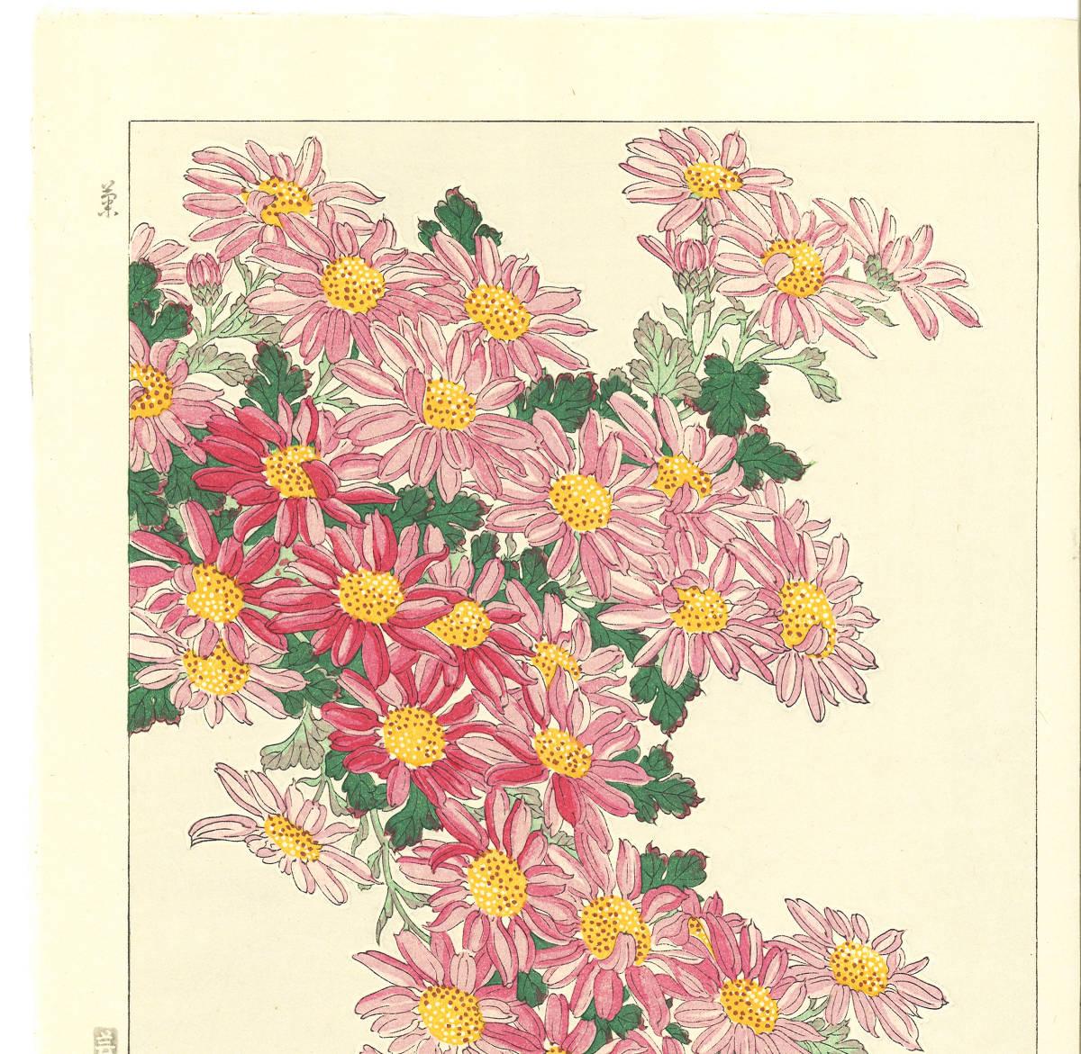 河原崎奨堂 (Kawarazaki Shodo) (1899~1973)木版画 F036 菊 花版画(Chrysanthemum)初版昭和初期~京都の一流の摺師の技をご堪能下さい_画像3