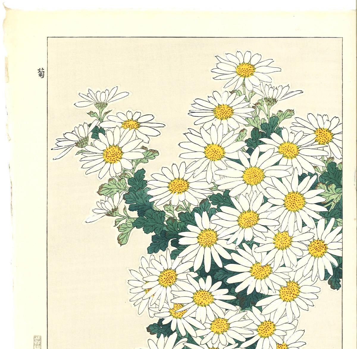 河原崎奨堂 (Kawarazaki Shodo) (1899~1973)木版画 F037 菊 花版画(Chrysanthemum)初版昭和初期~京都の一流の摺師の技をご堪能下さい。_画像3