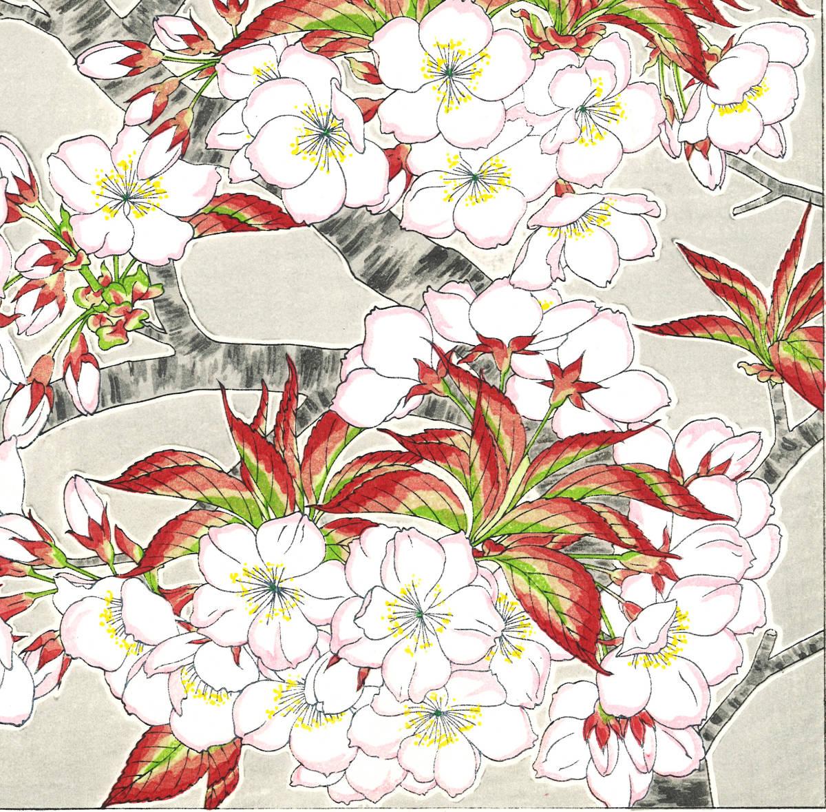 河原崎奨堂 (Kawarazaki Shodo) (1899~1973) 木版画 F020 桜 花版画 (cherry) 初版昭和初期~ 京都の一流の摺師の技をご堪能下さい。_画像10
