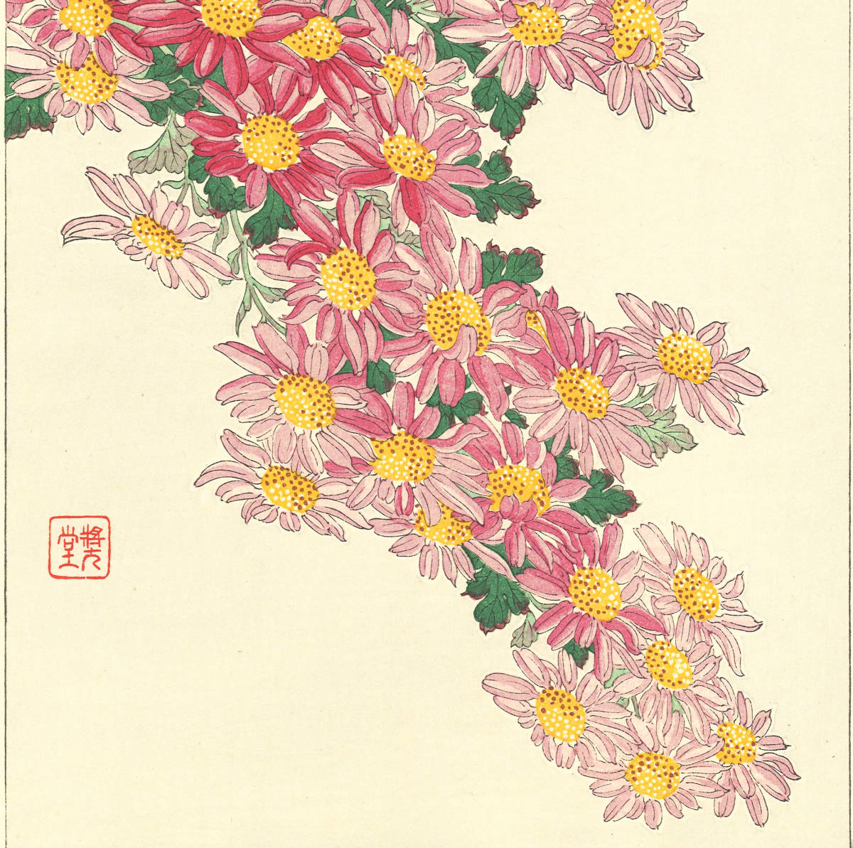 河原崎奨堂 (Kawarazaki Shodo) (1899~1973)木版画 F036 菊 花版画(Chrysanthemum)初版昭和初期~京都の一流の摺師の技をご堪能下さい_画像8
