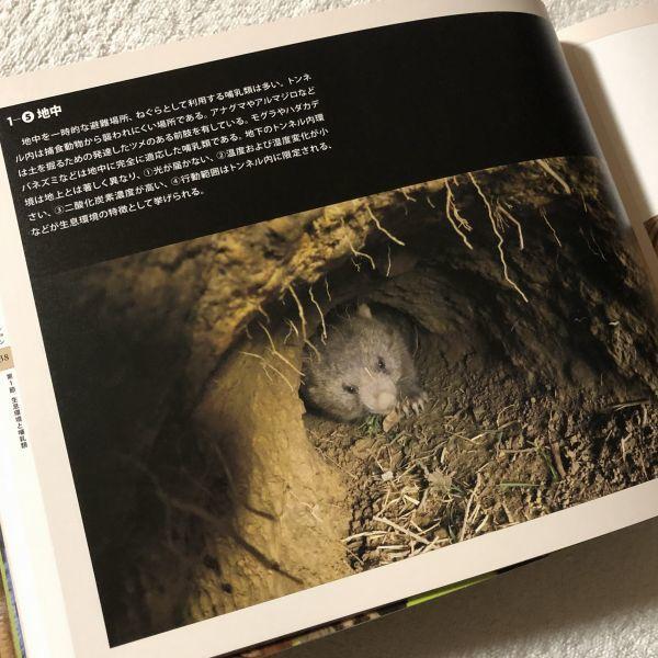 ★B0505★2019年開催「大哺乳類展 2 ~みんなの生き残り作戦~」図録/国立科学博物館_画像5