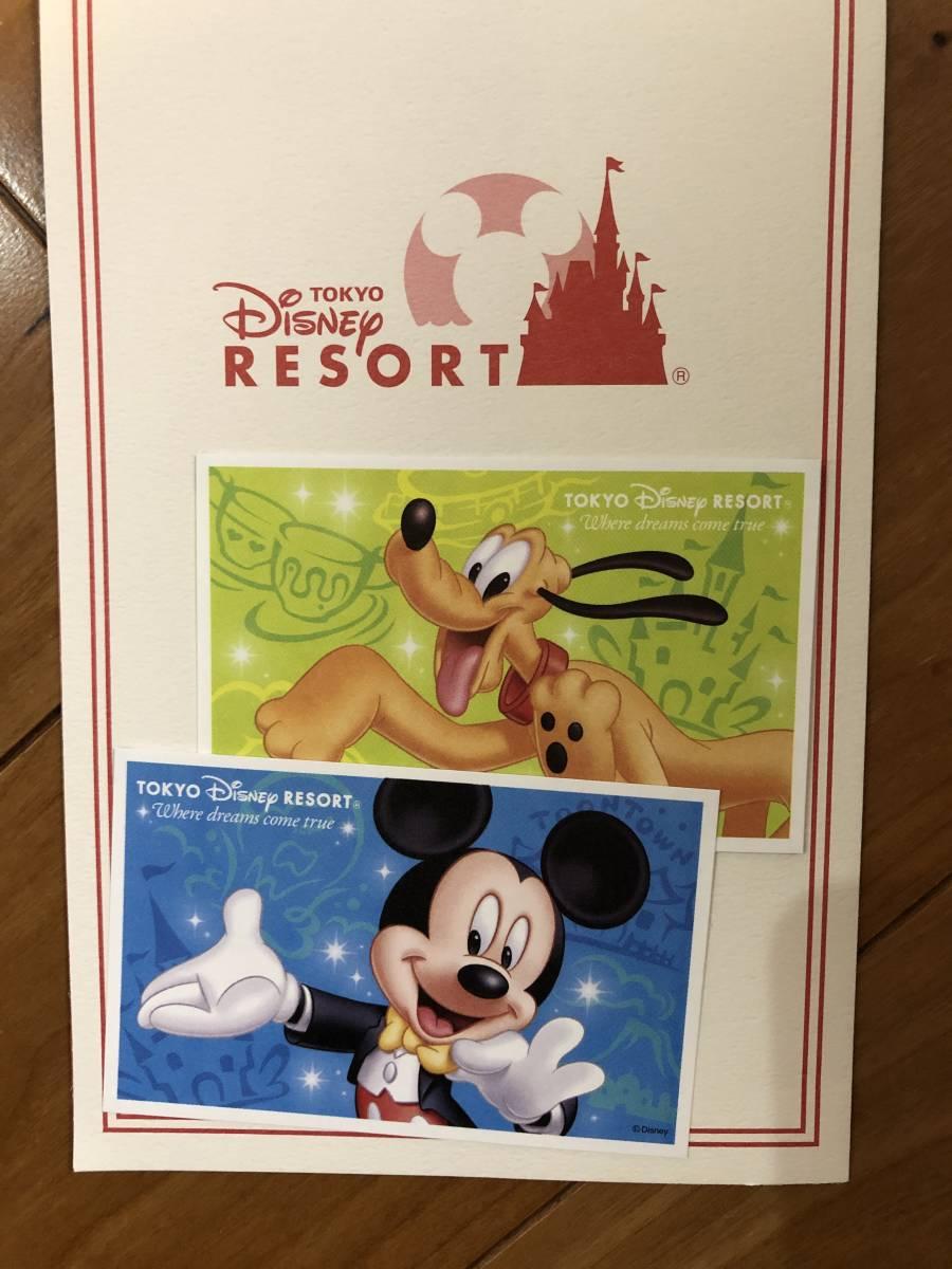 東京ディズニーリゾート スポンサーパスポート チケット 2枚 ペア ディズニーランド ディズニーシー 混雑時入園可能