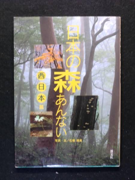【初版】日本の森あんない 西日本編 石橋睦美 淡交社 _画像1