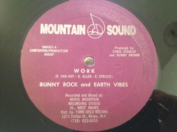 ☆Bunny Rock and Earth Vibes/Work☆JA産SYNTH BOOGIE!_画像1