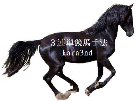 ◆◆◆3連単!利益をもたらす最高の競馬手法!◆◆◆