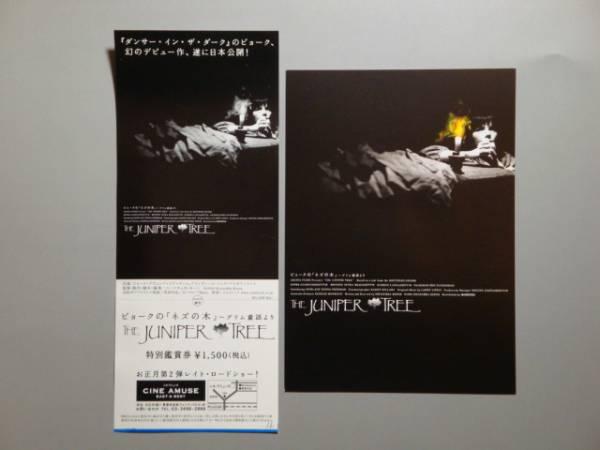 映画前売券 未使用 ビョークの「ネズの木」 ハガキ付き デビュー_画像1