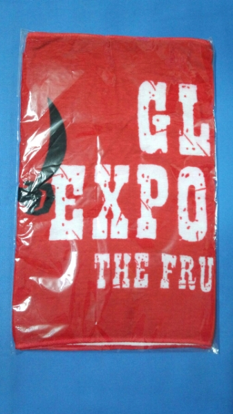 GLAY EXPO 2004 THE FRUSTRATED in USJ フェイス タオル
