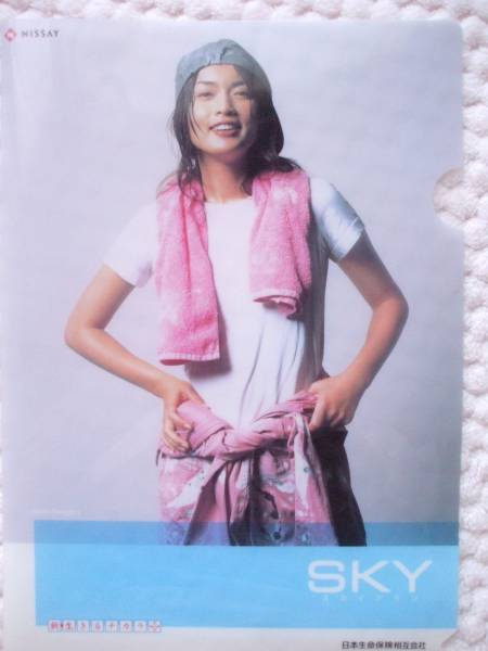 ■非売品■ 長谷川京子 ■ NISSAY ニッセイ 日本生命保険 ■クリアファイル■劇レア■超お宝