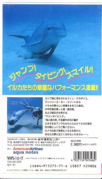 ビデオ『イルカの夢』(水中造形センター)_画像2