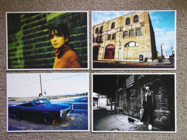 ZARD 坂井泉水 Photo Calendar Box ライブグッズの画像