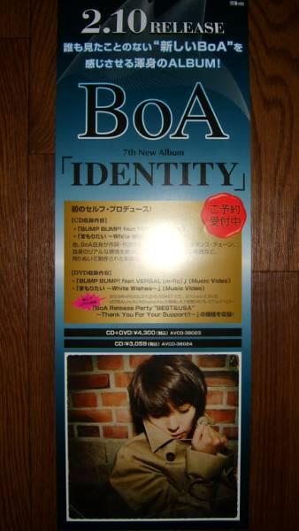 【ポスター3】 BoA/IDENTITY 非売品!筒代不要!
