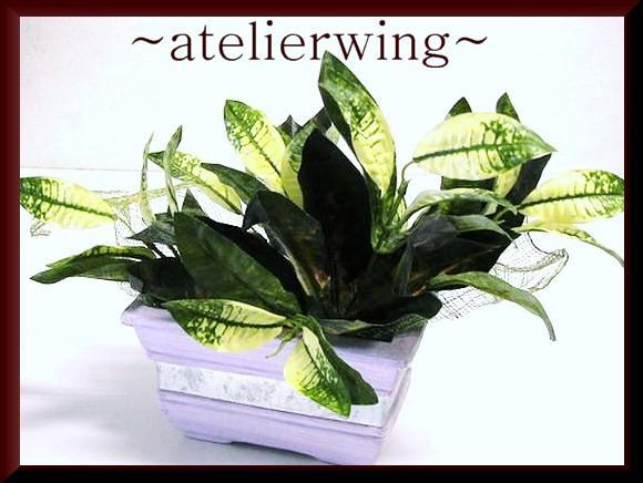 花器付観葉植物/プレゼント*お誕生日*お祝い/J153