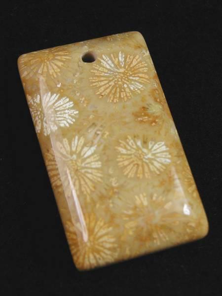 ♪即決【壽】天然最高AAA級極品特大珊瑚化石ペンダントトップ玉珮 No9_画像3