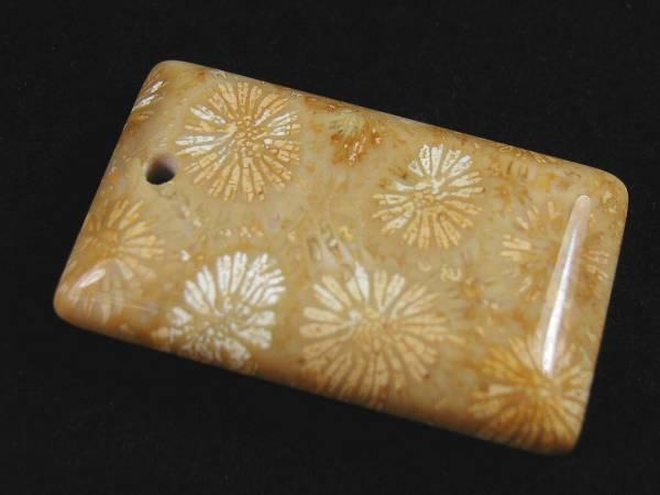 ♪即決【壽】天然最高AAA級極品特大珊瑚化石ペンダントトップ玉珮 No9_画像1