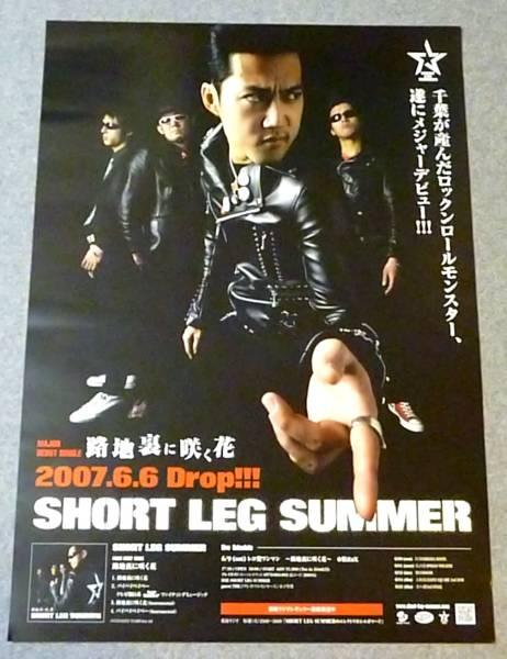 Ю⑥ 告知ポスター SHORT LEG SUMMER[路地裏に咲く花]