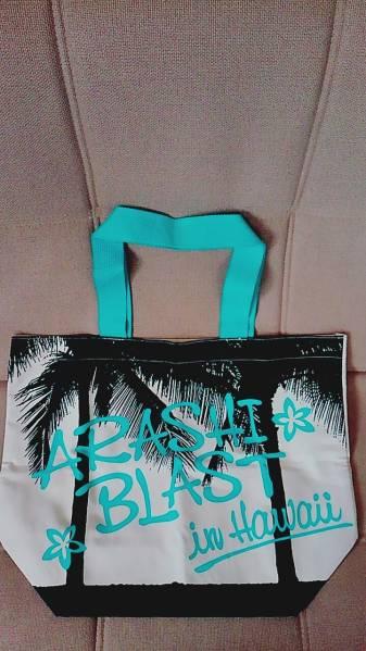 【新品未使用】嵐 ブラストハワイグッズ バッグ 送料164円