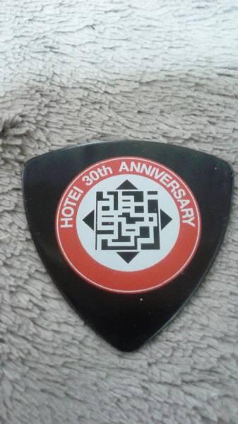 布袋 30周年記念ピック 送料込み