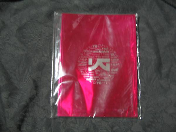 新品*YG FAMILY CONCERT 15th 写真集 BIG BANG SE7EN 2NE1*韓国