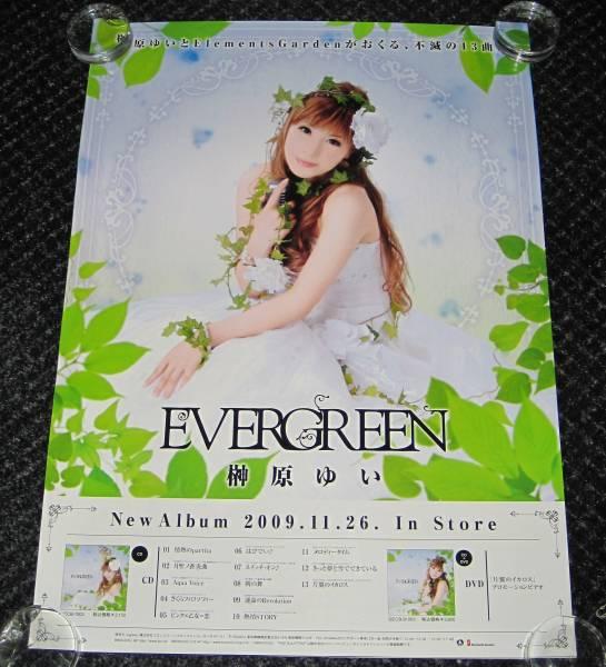 /■11告知ポスター 榊原ゆい「EVERGREEN」