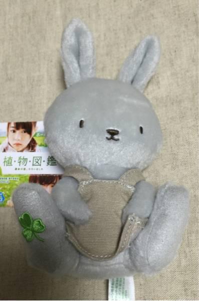 未使用☆植物図鑑☆ボールチェーン付きぬいぐるみ☆岩田剛典