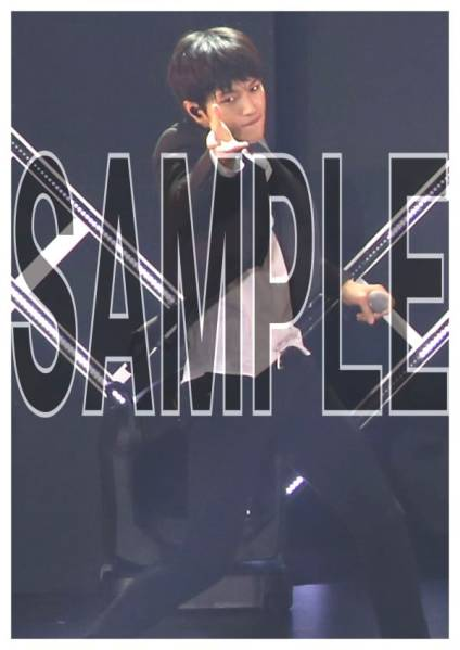 INFINITE エル L ミョンス SUPER CONCERT The Show2015 写真13枚