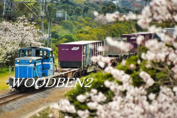 貨物の殿堂、京葉臨海鉄道と桜花の姿!2Lサイズ~大伸ばしまで♪_画像1
