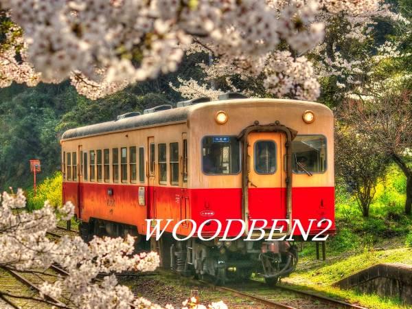 房総小湊鉄道と桜花コラボです!A4サイズより、大伸ばしまで♪_HDR現像済みです。