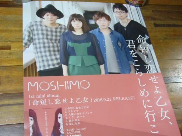貴重 B2大 ポスター MOSHIMO「命短し恋せよ乙女